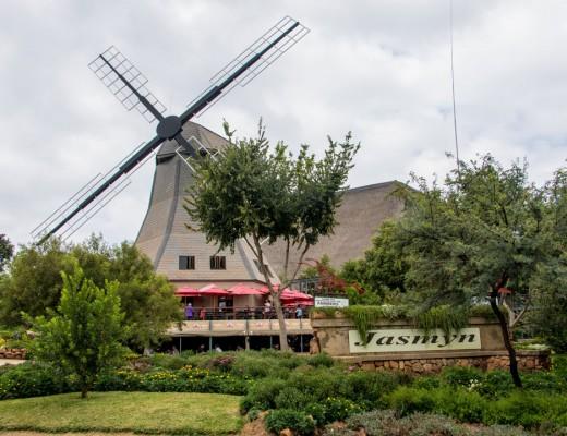 Dutch Jasmyn Farmstall
